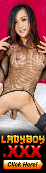 The most Horny Hung Sexy Ladyboys and Shemales on Earth!!